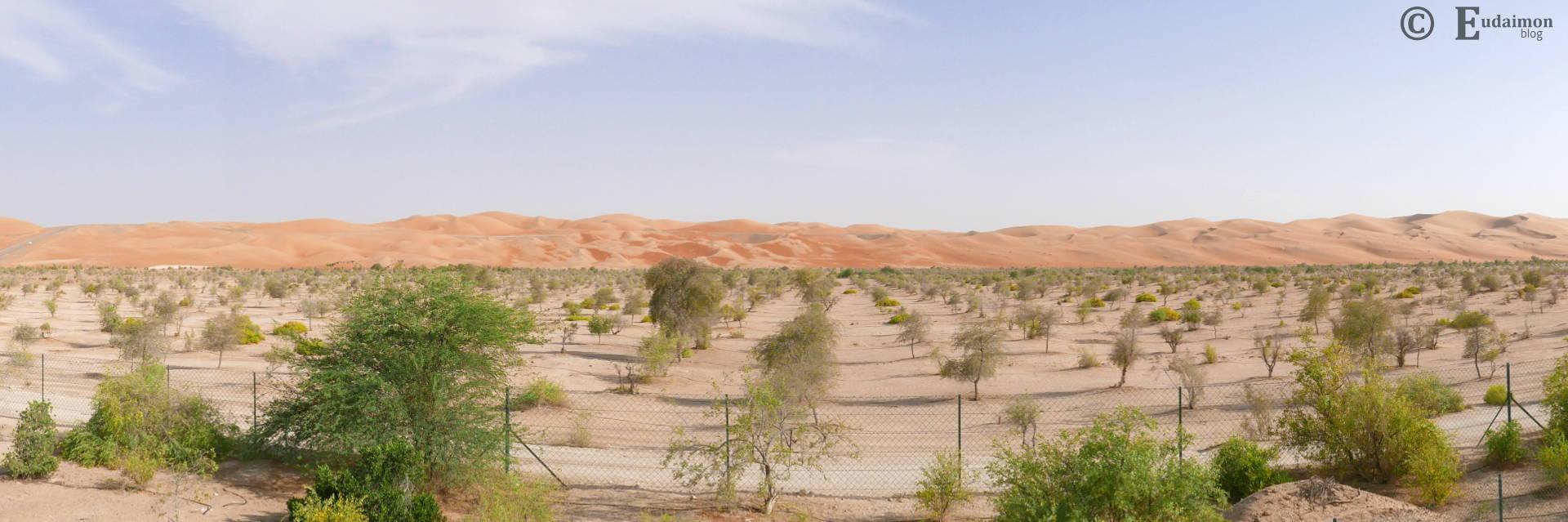Droga z Abu Dabi do Qasr Al Sarab