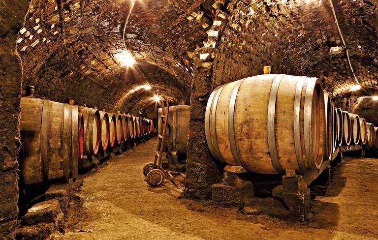 Tokajski region winiarski. Autor: Dancsecs Ferenc (www.furmintphoto.com)