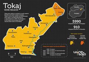 Mapa tokajskiego regionu winiarskiego. Źródło: http://www.winesofa.eu/