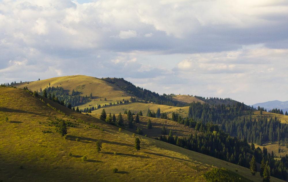 Wyżynny krajobraz Transylwanii